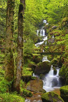 De Triberger watervallen zijn met hun 163 meter de hoogste watervallen van Duitsland.