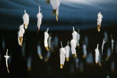 gold dipped feathers -- use them to hang from the ceiling or make a ceremony backdrop