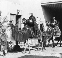 02_Cairo - Wedding Procession 1890 | Flickr - Photo Sharing!