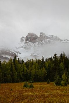 The Towers in Mount Assiniboine Provincial Park by Lee Rentz, via Flickr