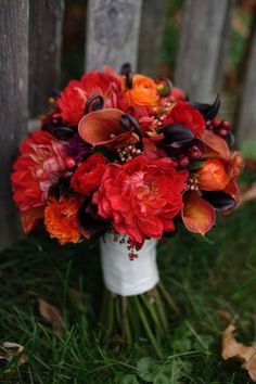 For brides planning fall weddings...these colors would look amazing at Longfellows. Love the deep saturated colors!