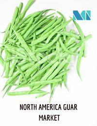 North America Guar Market