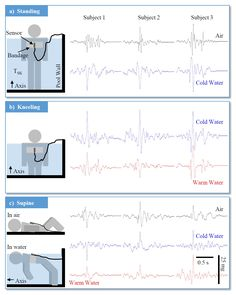 » 3aBA12 – Sternal vibrations reflect hemodynamic changes during immersion: underwater ballistocardiography – Andrew Wiens, Andrew Carek, Omar T. Inan