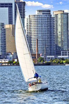 Sailing in Toronto Harbour, Canada