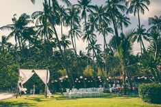 Palm trees strung with lanterns tower over the gorgeous venue. #refinery29 http://www.refinery29.com/erica-camille-productions/24#slide-10