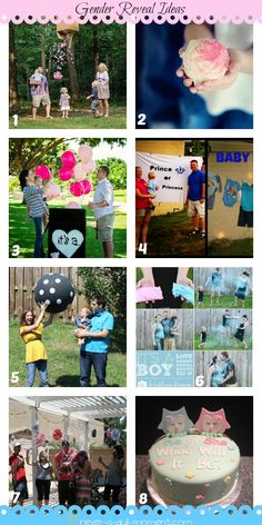 Gender Reveal | Never a Dull Moment