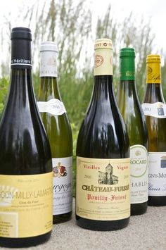Chardonnay Is Not Just Chardonnay: A Quick Guide to the 3 Styles of White Burgundy | The Kitchn Premium wines delivered to your door.  Get in. Get wine. Get social.