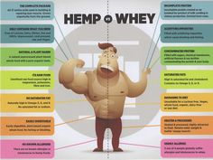 Cannabis Plant, Amino Acids, Hemp, Infographics, How To Apply, Infographic, Infographic Illustrations, Info Graphics, Visual Schedules