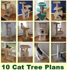 Make A Cat Scratching Post: If you own a cat you will need to provide your cat with a cat tree. Making a DIY cat scratcher is rewarding and saves a lot of money