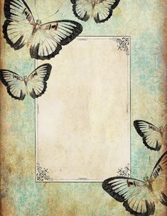 Butterfly stationery, so pretty.