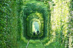 ¿quien dijo q habia q seguir el camino amarillo? Todos con el camino verde!!!!