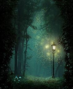 fireflies - I loved these back home in Memphis when i was a kid :-) I'd catch them in a jar at night and let them do in my room for a spell - magical yes!!