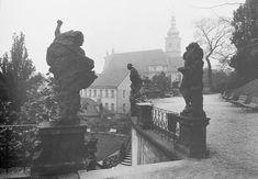 Fotografové Prahy, historické fotografie Jan Reich