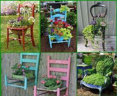 Chair art with plants