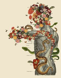 Anatomical Collages by Travis Bedel mixed media collage anatomy