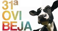 Ovibeja 2014 até domingo no Parque de Feiras e Exposições de Beja! | Algarlife
