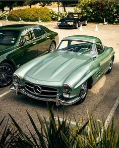 Green with envy. A Mercedes captured by Mercedes Benz 300 Sl, Mercedes Benz Autos, Pretty Cars, Cute Cars, Audi, Bmw M235i, Mercedes Classic, Beverly Hills Cars, Mercedez Benz