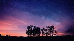 starry nights images - Google Search