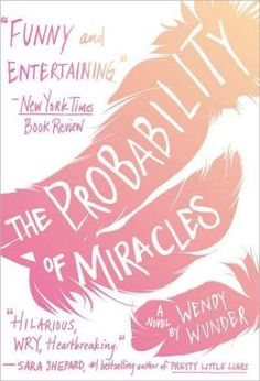 The Probability of Miracles: an excellent novel. It was incredible, probably one of the only books that has made me cry. It definitely is not mainstream which makes it even more special. I seriously recommend it.