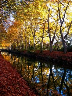 | ♕ |  Canal du Midi, Toulouse, France  | by mariodeleo