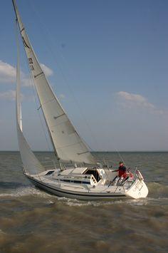 balaton Sailboat, Hungary, Sailing, Universe, Sailing Boat, Candle, Sailboats, Sailing Ships