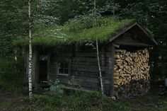 Read the web above press the grey link for more details custom sauna Outdoor Sauna, Finnish Sauna, Off Grid Cabin, Cabin Floor Plans, Living Roofs, Wood Shed, Small Buildings, Cabins In The Woods, Log Homes