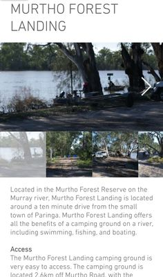 Murray River, Camping Spots, Small Towns, Swimming, Boat, Plants, Swim, Dinghy, Boats