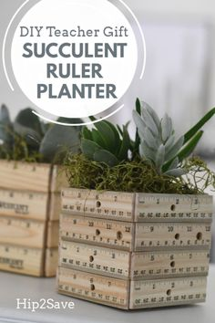 DIY Ruler Succulent Planter (Fun Teacher Appreciation Gift Idea) Make this fun DIY ruler succulent planter! It's a cute and stylish gift idea for teacher appreciation that they'll enjoy all year long! Succulent Planter Diy, Succulent Gifts, Succulents Diy, Succulents Painting, Succulents Wallpaper, Succulents Drawing, Ruler Crafts, Presents For Teachers, Teacher Appreciation Gifts