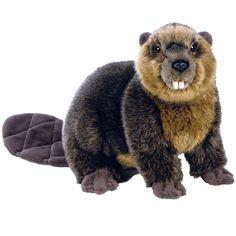 Webkinz Signature Beaver Webkinz - imagine all the little forest creatures...haha love the beaver