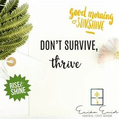 Good morning Sunshine! Remember if you are going to #thrive  give it your best all or nothing.  Strive for the best and Make it Happen! #humpday #motivation #miamirealestate #floridarealtors #bienesraices #cierres #letscloseit #Miami #broward #westpalmbeach #bocaraton #ftlauderdale #naples #thetitlegirl