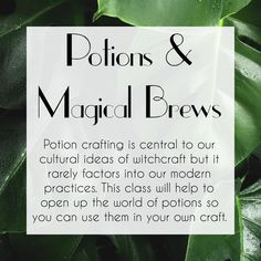Potions & Magical Brews Course by The Traveling Witch Easy Love Spells, Traditional Witchcraft, Magick, Wicca, Main Page, Book Of Shadows, Crow, Spelling, Brewing