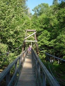 Toccoa Swinging Bridge and other hikes in Blue Ridge, GA