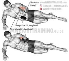 biceps workout The lying dumbbell supination, an isolated pulling exercise, activates the supinator, a deep forearm muscle, and the biceps brachii. Wod Workout, Calisthenics Workout, Dumbbell Workout, Workout Plans, Kettlebell, Upper Body Hiit Workouts, Gym Workouts, Assassins Workout, Forearm Muscles