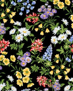 A Wildflower Meadow - Summer Mix-Quilt Fabrics from www.eQuilter.com