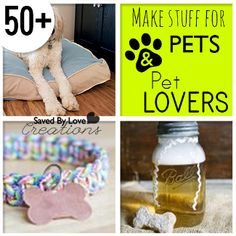 Easy DIY Projects to Make for Pets And Pet Lovers