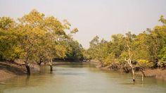 The Sunderbans, 3Days/2Nights - Proposed Route: Jamespur Island - Sajnekhali - Sudhanyakhali - Dobanki OR as per Customer's choice