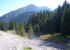 Dolina Chochołowska.