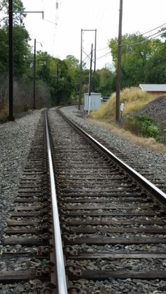 The Winding Track