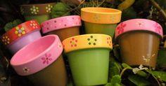 Colorful planters