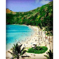 【otbkei】さんのInstagramをピンしています。 《#ハワイ#ホノルル#オアフ島#ハナウマ湾#シュノーケリング#シュノール#海#景色#イマソラ#空#海#旅行#トラベル#夏休み#バカンス#バケーション #summervacation#vacation#travel#sea#holiday#hawaii#honolulu#oahu#hanaumabay#snorkelling#snorkel》