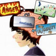 Le Cerveau de l'Enfant et de l'Adolescent: Le Cerveau de l'Adolescent