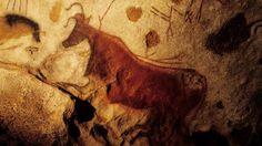 """La """"vache rouge"""" de la grotte de Lascaux"""