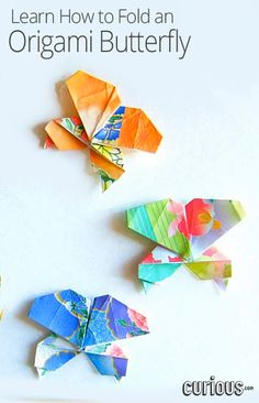 1000 images about origami on pinterest dollar bills