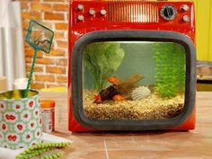 Manualidades y Artesanías | Pecera con TV | Utilisima.com