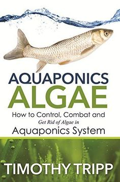 Algae: How to Control, Combat and Get Rid of Algae in Aquaponics System: Timothy Tripp. The presence of algae can have serious repercussions in the health and vitality of all organisms in an aquaponic grow system. Aquaponics Greenhouse, Aquaponics Fish, Fish Farming, Aquaponics System, Hydroponic Gardening, Organic Gardening, Shrimp Farming, Vegetable Gardening, Container Gardening