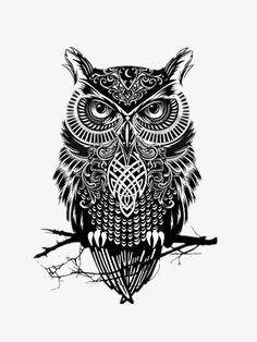 Owl tattoo design, minus the celtic stuff. Owl Tattoo Design, Tattoo Designs Men, Mops Tattoo, Scary Owl, Image Swag, Buho Tattoo, Tattoo Owl, Tattoo Maori, Tribal Owl Tattoos