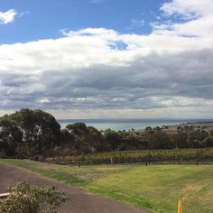 Such a lovely day out! Maybe I could find a litre cottage out here. #bellarine #bellarinepeninsula #winecountry #terindah #portphillipbay #portphillip #bestofburncity #melbonpix #melbournetodo #melbournesights #visitvictoria #victorian #victoriancountry #streetsofaustralia #australia #sky #country #winery #estate #vineyard by genengelhardt http://ift.tt/1JO3Y6G