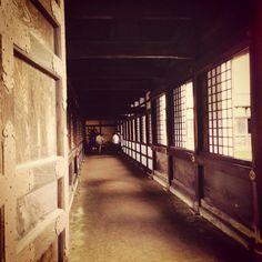 #zuiryuji #temple #nationaltresure #toyama