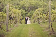 A Minnesota Vineyard Wedding! Photo by Kelly T. #weddingphotographersmn #minnesotaweddingplanner