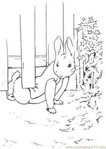 peter rabbit, color pages - Yahoo Image Search Results